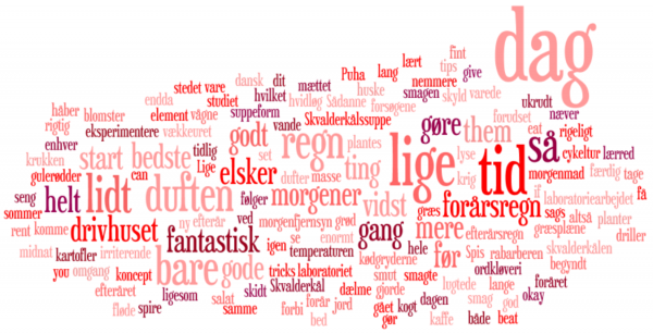 Frøken Lyngsø Wordle